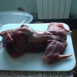 Филе из спинки зайца